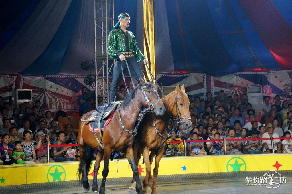 俄罗斯马戏团---马术