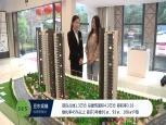 亚东观樾视频售楼处