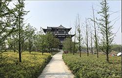 七渔河:春日迟迟,卉木萋萋