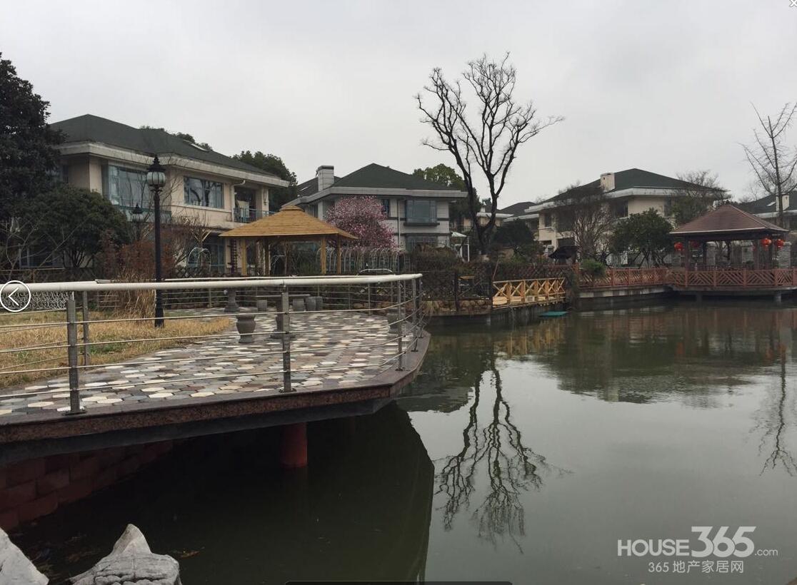 汤山独栋别墅(东湖丽岛小区)花园独家院子400平米紧靠湖边