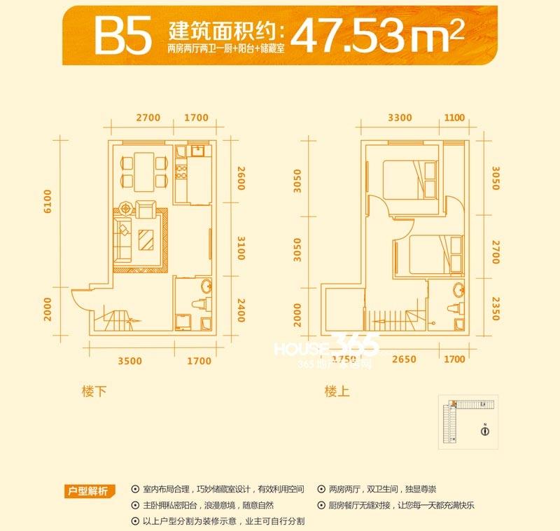 圣大国际商业广场阳光5米6 B5户型图