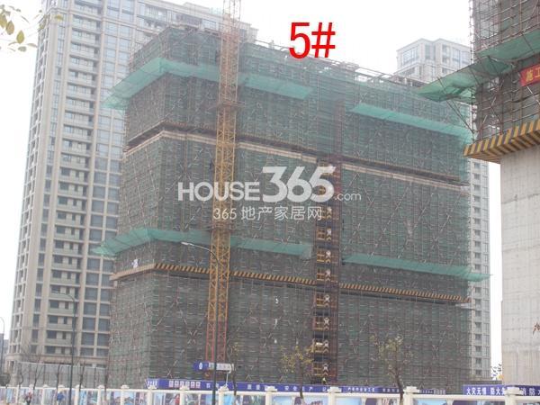 绿城玉兰广场5#楼工程进度图(2015.3)