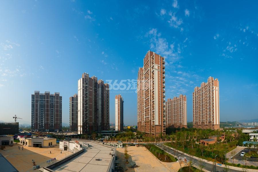越秀星汇城高层实景图 2015年10月摄