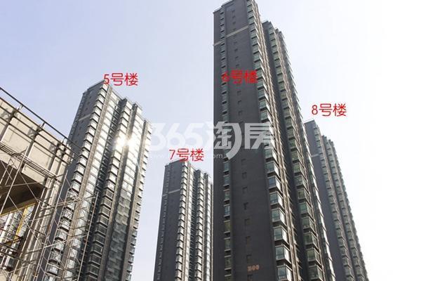 良志嘉年华二期实景图