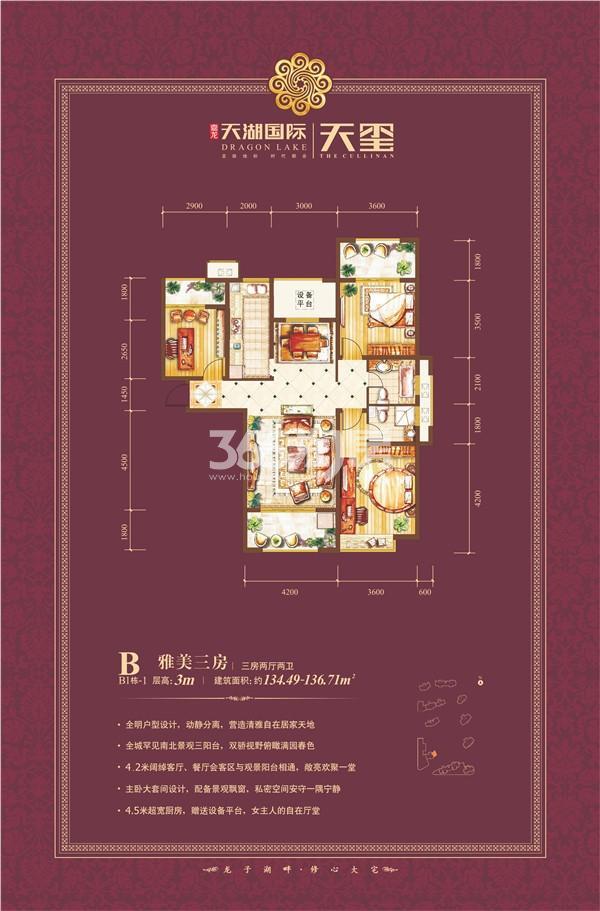 天湖国际户型图B1-1 三室两厅135㎡