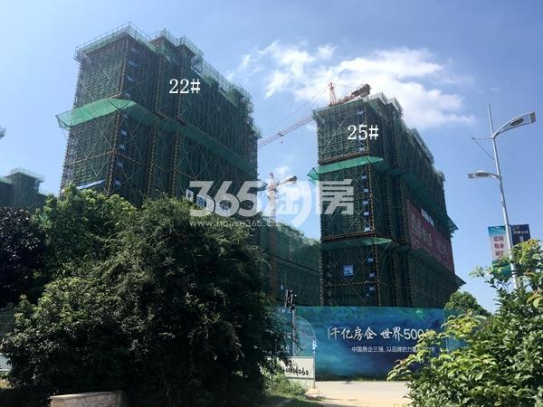 西溪碧桂园一期22、25#楼高层工程实景(2017.9)